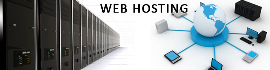 Business Reseller Hosting